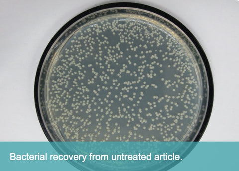 Untreated control shows bacterial growth.