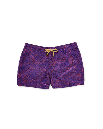 Athena Fans Swim Shorts in Purple - Thorsun