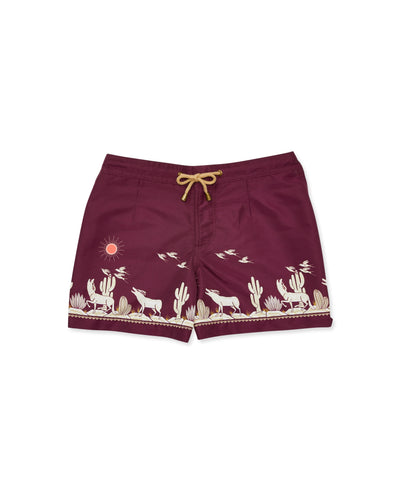 Athena Coyote Swim Shorts in Maroon - Thorsun