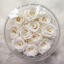 "White Roses that Last a Year! - Round Acrylic Box - Other Colors Available! ""Arden Preserved"""