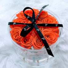 """The Arden Duo"" - Two Round Acrylic Boxes of Fresh Cut Roses - Color Variety Available"