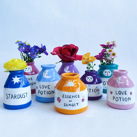 Potion ceramic pots with flowers by Lisa Junius