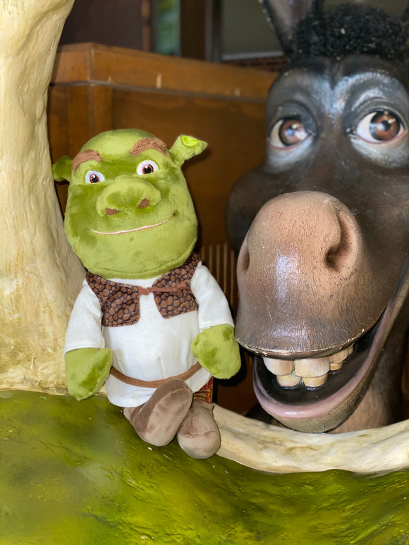 Shrek Medium Soft Toy