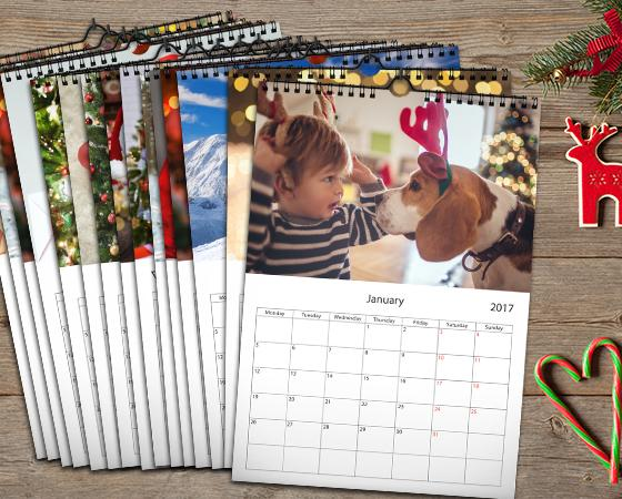 "11.7"" x 16.5"" - 25 Wall Calendars