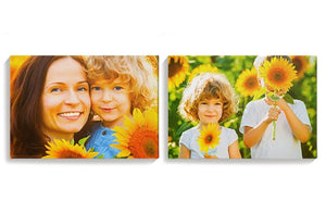 Photo Canvases x2