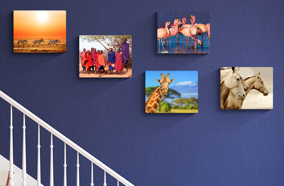 "12"" x 10"" Multi Photo Canvas x 5