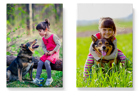 2 Photo Canvases|16'' x 20''|74|blackfriday-18