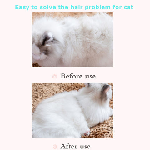 Cats Comb Brush