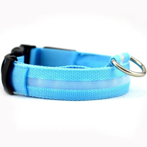 Dog Collar Pet Night Safety Glow In The Dark LED Leash