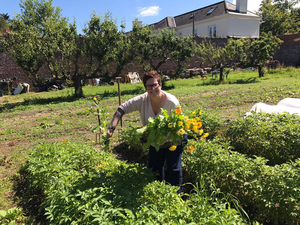 Mrs R picking organic marigolds for her Craic Balm...
