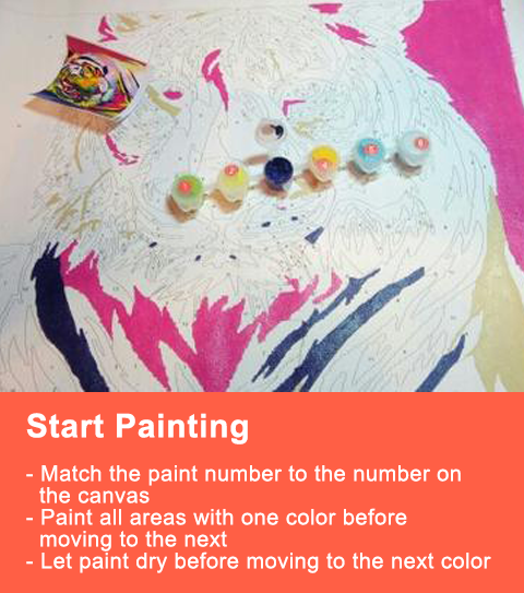 Paint By Numbers Instructions
