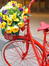 My Red Bicycle - Diamond Painting Kit