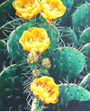 Cactus Flowers - Diamond Painting Kit
