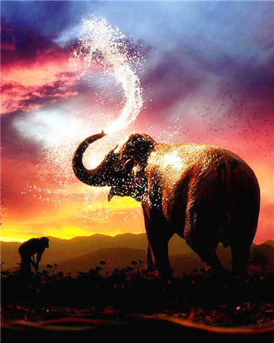 Elephant Shooting Water - Paint By Numbers Kit