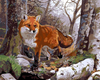 Alert Fox - Paint By Numbers Kit
