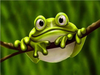 Frog - Diamond Painting Kit