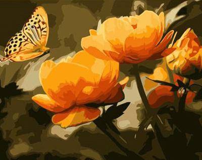 Golden Butterfly  - Paint By Numbers Kit