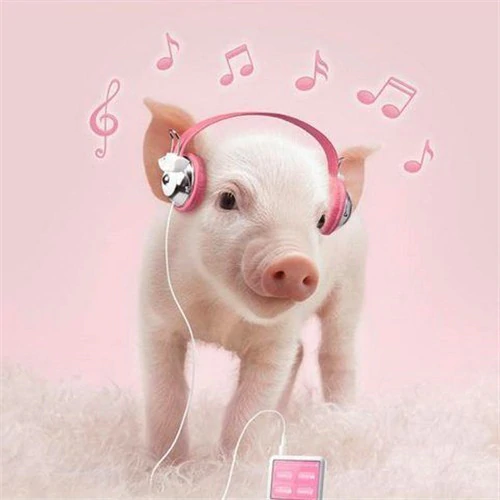 Pink Pig and iPod - Diamond Painting Kit