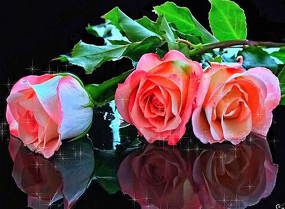 Rose Reflections - Diamond Painting Kit