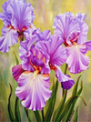 Spring Flowers 4 - Diamond Painting Kit