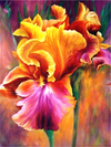 Spring Flowers 6 - Diamond Painting Kit