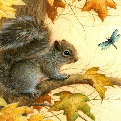 Squirrel - Diamond Painting Kit