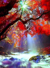 Vibrant Landscape 1 - Diamond Painting Kit