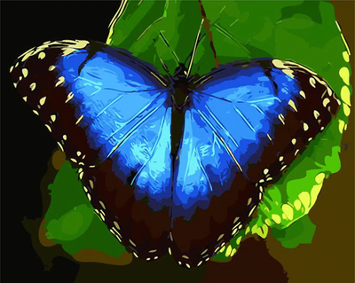 Bright Blue Butterfly on Leaf - Paint By Numbers Kit