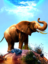Elephant on Hill - Paint By Numbers Kit