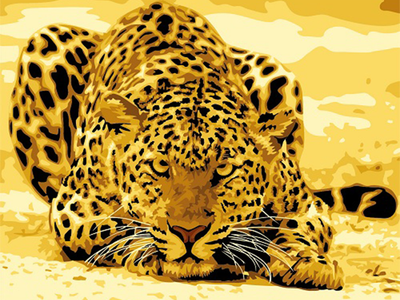 Golden Leopard - Paint By Numbers Kit
