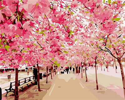 Pink Blossoming Park - Paint By Numbers Kit