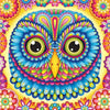 Blue Owl - Diamond Painting Kit