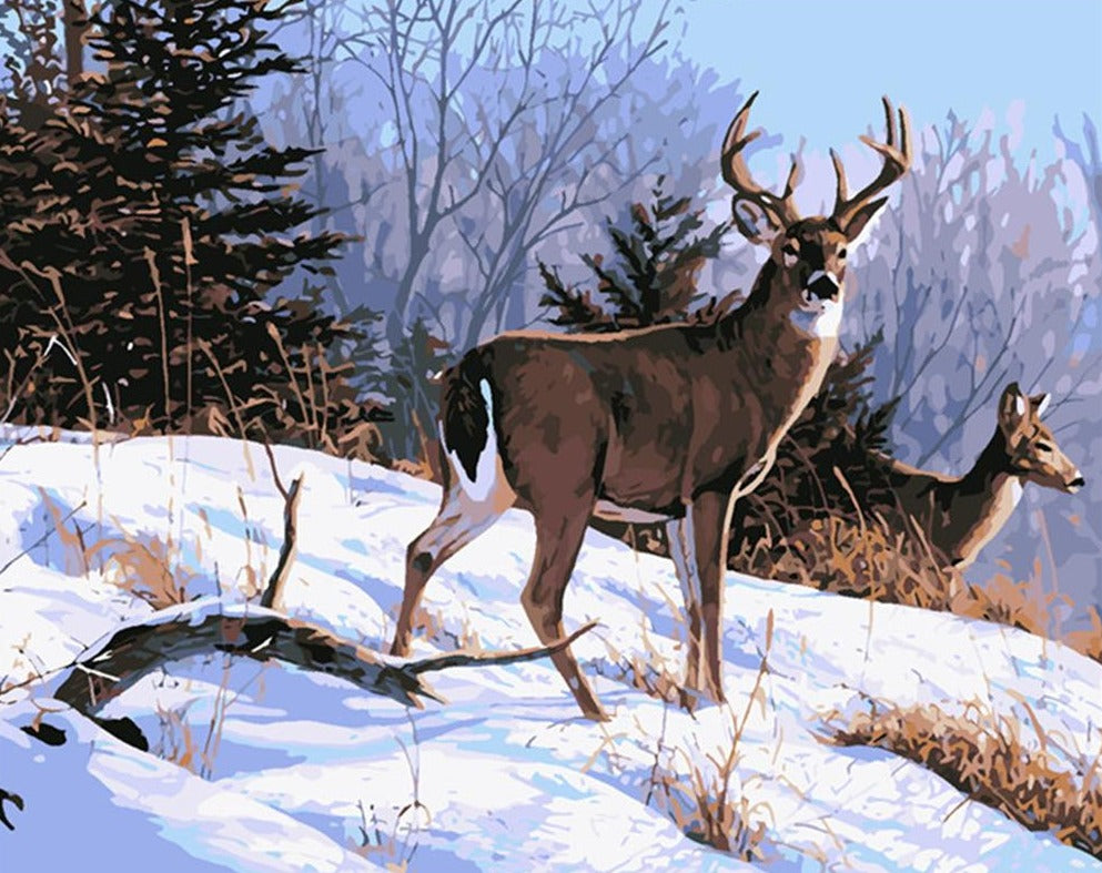 Deer in Snow - Paint By Numbers Kit