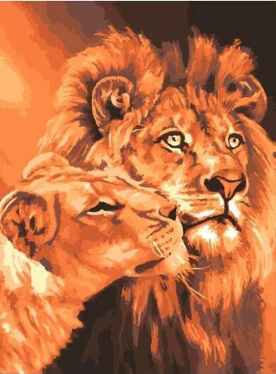 Lion Kings - Paint By Numbers Kit