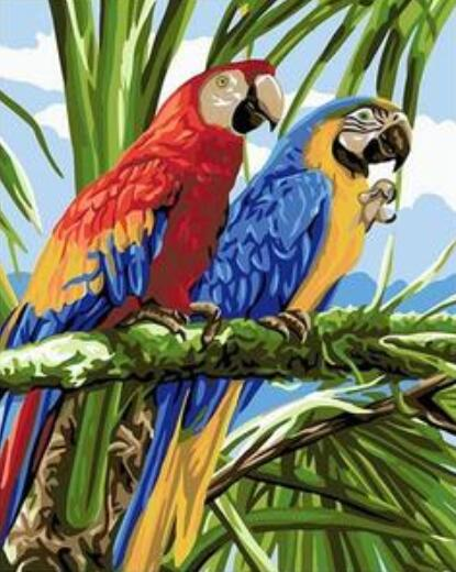 Macaw Rainforest Bird - Paint by Numbers Kit