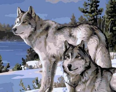 Wolves in the Snow - Paint by Numbers Kit