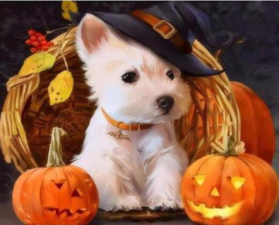 Halloween Dog - Paint By Numbers Kit
