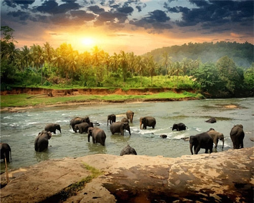 Elephants in River Bed - Paint By Numbers Kit