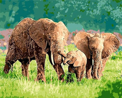 Elephant Family on Grass - Paint By Numbers Kit