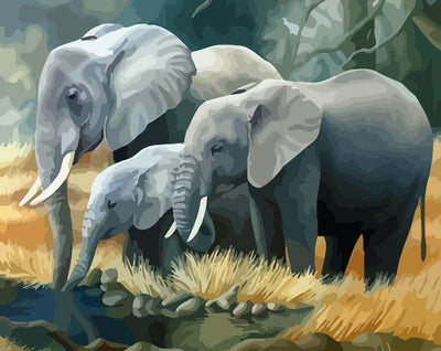 Elephant Family - Paint By Numbers Kit