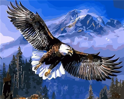 Bald Eagle Flying - Paint By Numbers Kit