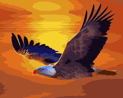 Bald Eagle in Golden Sunset - Paint By Numbers Kit