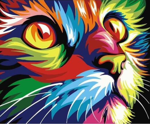 Colorful Cat - Paint By Numbers Kit