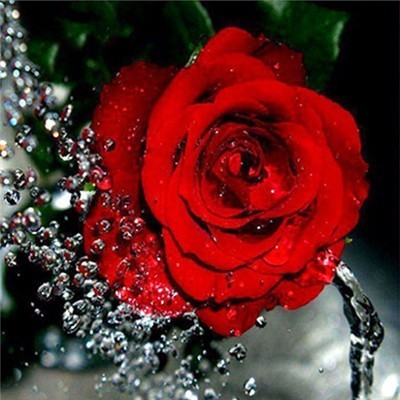 Single Red Rose - Diamond Painting Kit