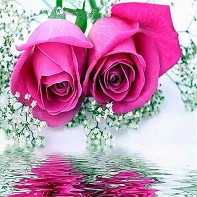 Bright Pink Roses - Diamond Painting Kit