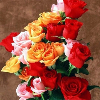 Colorful Bouquet of Roses - Diamond Painting Kit