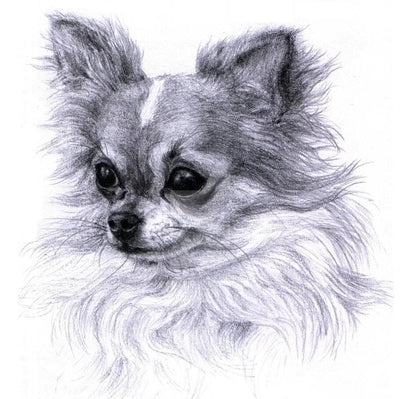 Chihuahua Etching - Diamond Painting Kit