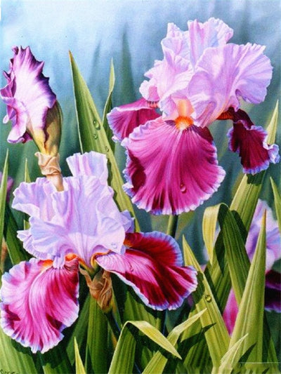 Spring Flowers 8 - Diamond Painting Kit