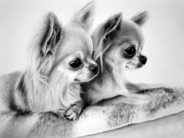 Chihuahua Puppies - Diamond Painting Kit