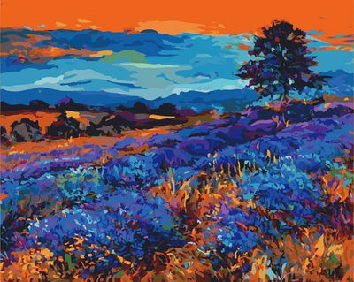 Blue Fields - Paint By Numbers Kit